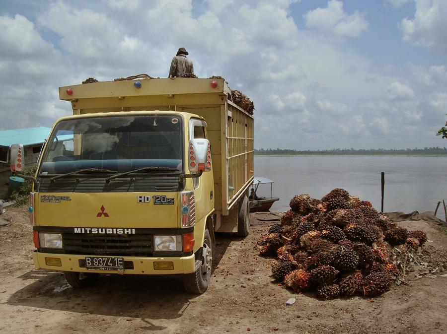 パーム油とトラック